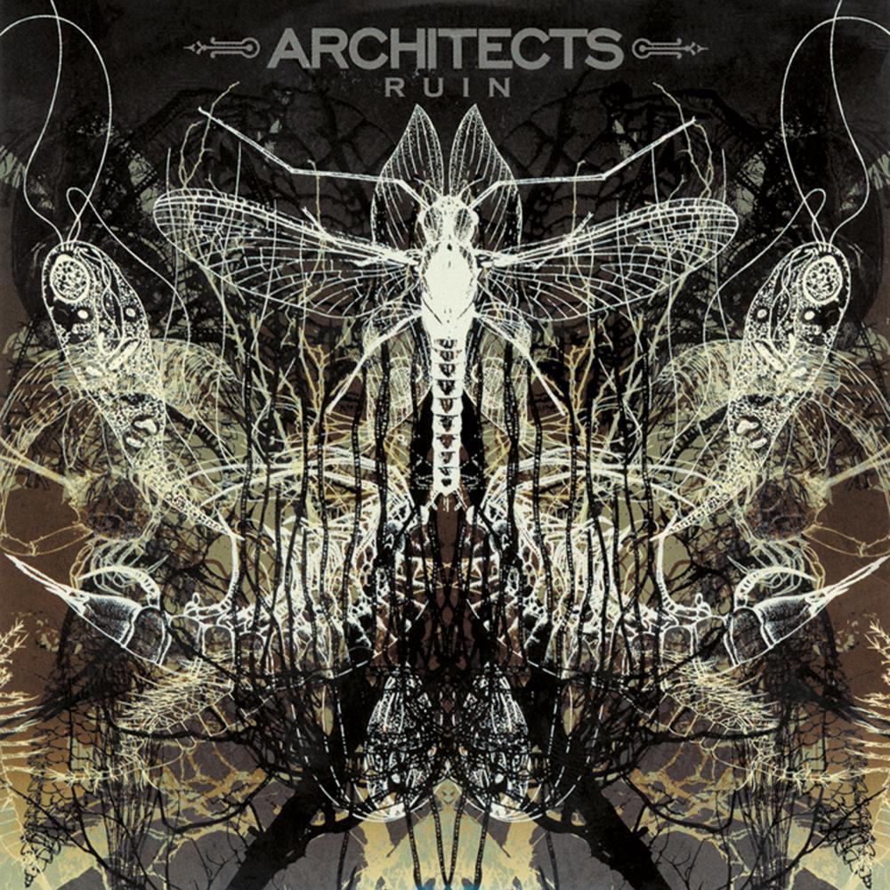 Architects You 39 Ll Find Safety Lyrics Genius Lyrics