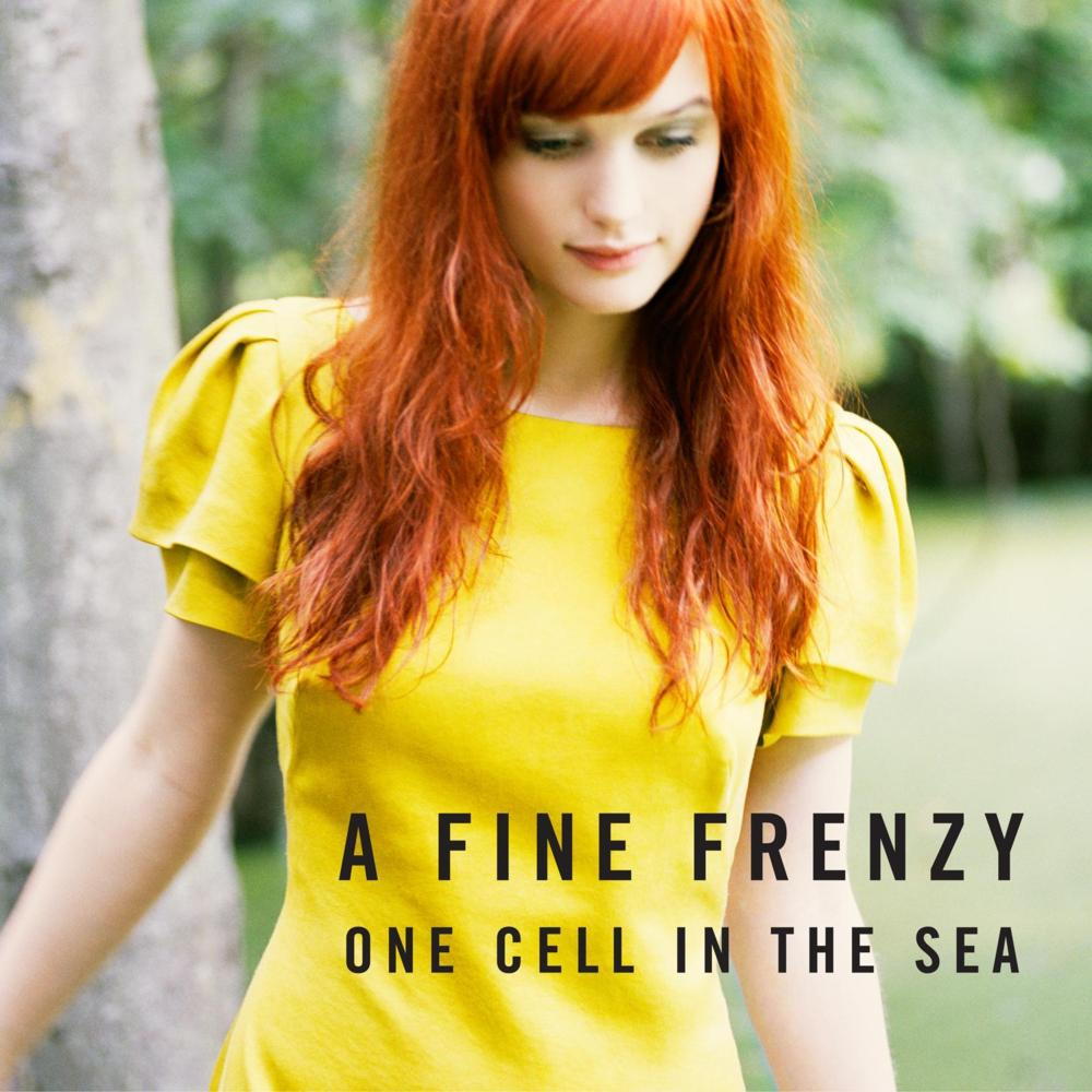 Lyrics containing the term: come on come out by a fine frenzy